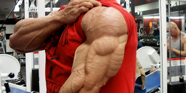 how-to-build-triceps