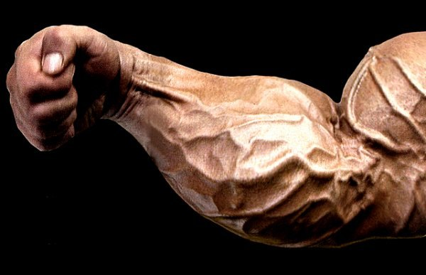 Huge Forearms Require a Powerful Grip