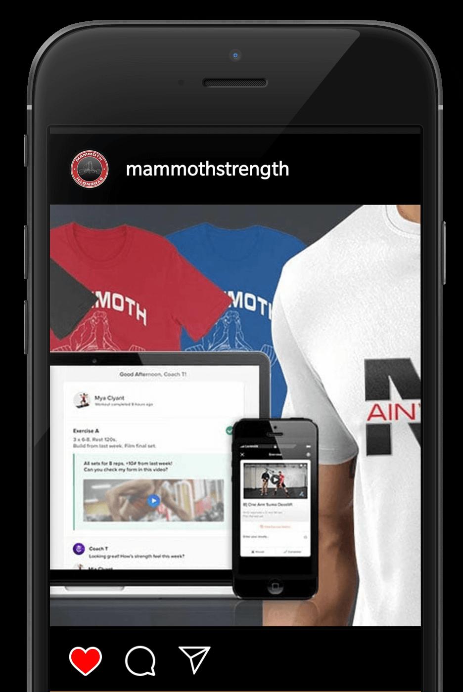Mammoth Strength Contest